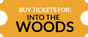 20920 Summer Stock Stage Tickets Intowoods R1